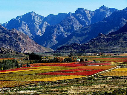 Natural Valley Foods South Africa